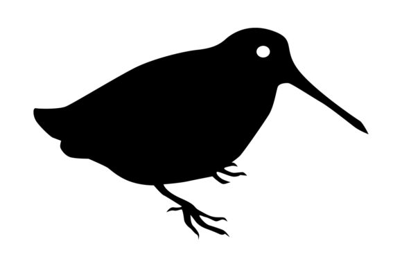 Download Free Woodcock Bird Silhouette Graphic By Idrawsilhouettes Creative for Cricut Explore, Silhouette and other cutting machines.