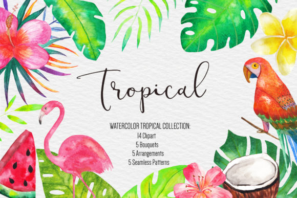 Watercolor Tropical Clipart Illustration Graphic Illustrations By BonaDesigns