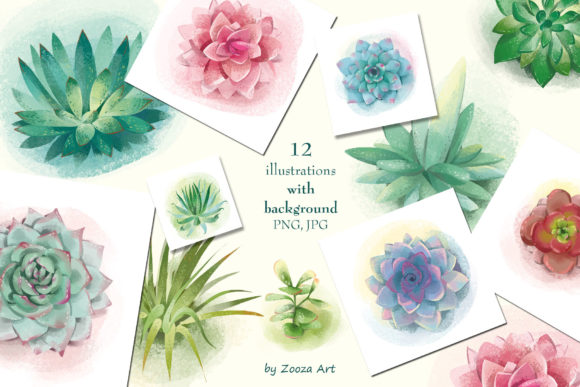 Succulents Illustrations And Patterns Graphic By Zooza Art