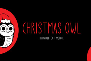 Print on Demand: Christmas Owl Display Font By Instagram Fonts 1