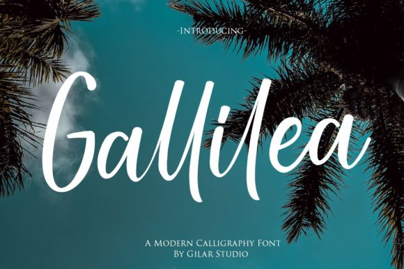 Print on Demand: Gallillea Script & Handwritten Font By Gilar Studio