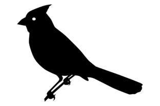 Download Free Cardinal Bird Silhouette Graphic By Idrawsilhouettes Creative for Cricut Explore, Silhouette and other cutting machines.