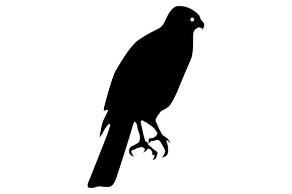 Download Free Hawk Bird Silhouette Graphic By Idrawsilhouettes Creative Fabrica for Cricut Explore, Silhouette and other cutting machines.
