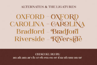 Print on Demand: The Rankings Serif Font By letterhend 6