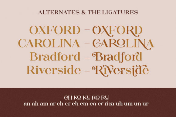 Print on Demand: The Rankings Serif Font By letterhend - Image 6