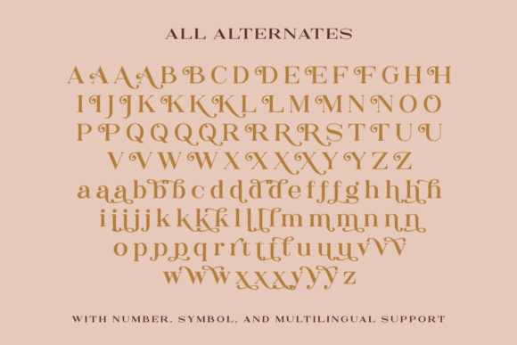 Print on Demand: The Rankings Serif Font By letterhend - Image 9