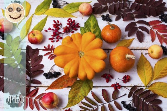 Print on Demand: Fall Leaves Pumpkin Berries Graphic Nature By TasiPas - Image 1