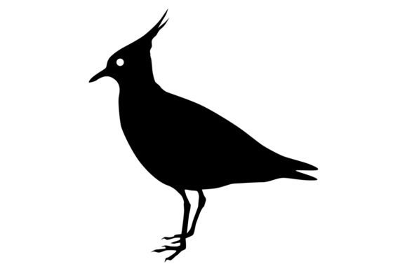 Download Free Lapwing Bird Silhouette Graphic By Idrawsilhouettes Creative for Cricut Explore, Silhouette and other cutting machines.