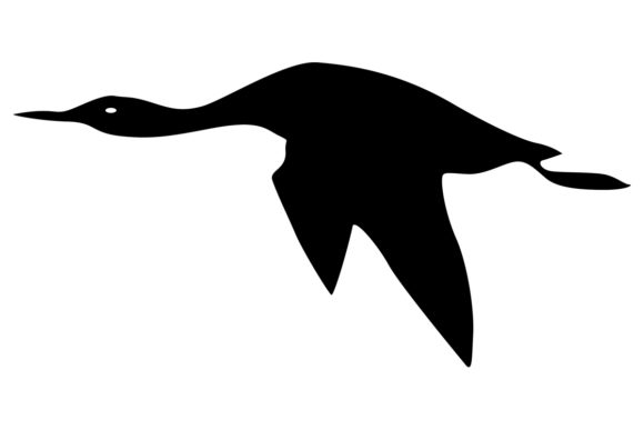 Download Free Loon Bird Silhouette Graphic By Idrawsilhouettes Creative Fabrica for Cricut Explore, Silhouette and other cutting machines.