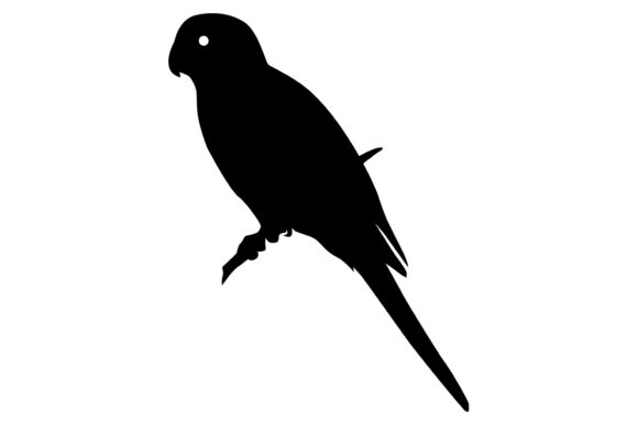 Download Free Monk Parakeet Bird Silhouette Graphic By Idrawsilhouettes for Cricut Explore, Silhouette and other cutting machines.