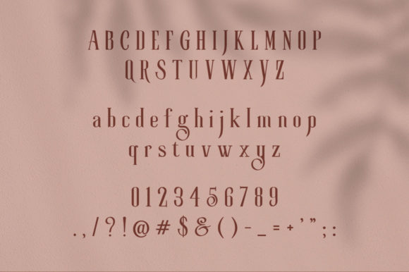 Print on Demand: Roller Coaster Serif Font By lickermelody - Image 19