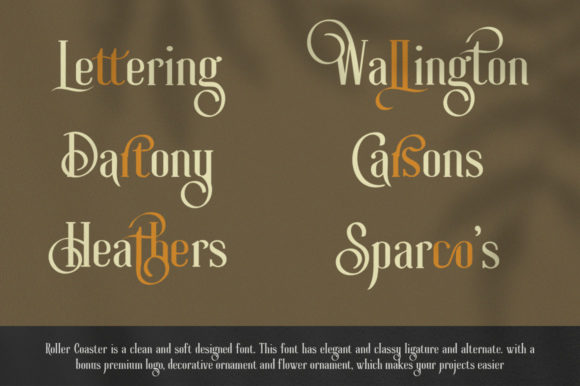 Print on Demand: Roller Coaster Serif Font By lickermelody - Image 7