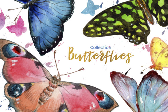 Print on Demand: Miracle of Nature Butterflies Watercolor Graphic Illustrations By MyStocks - Image 8