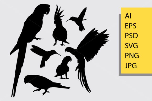 Bird Animal Silhouette Graphic Illustrations By Cove703