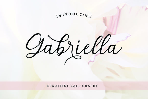 Print on Demand: Gabriella Script & Handwritten Font By MJB Letters