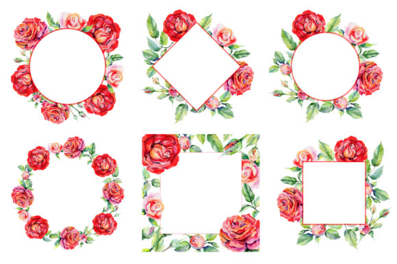 Print on Demand: Roses Red PNG Watercolor Graphic Illustrations By MyStocks - Image 3