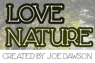 Love Nature Sans Serif Font By Joe Dawson