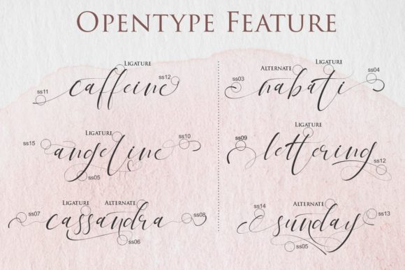 Print on Demand: Tagonda Script & Handwritten Font By Gilar Studio - Image 8