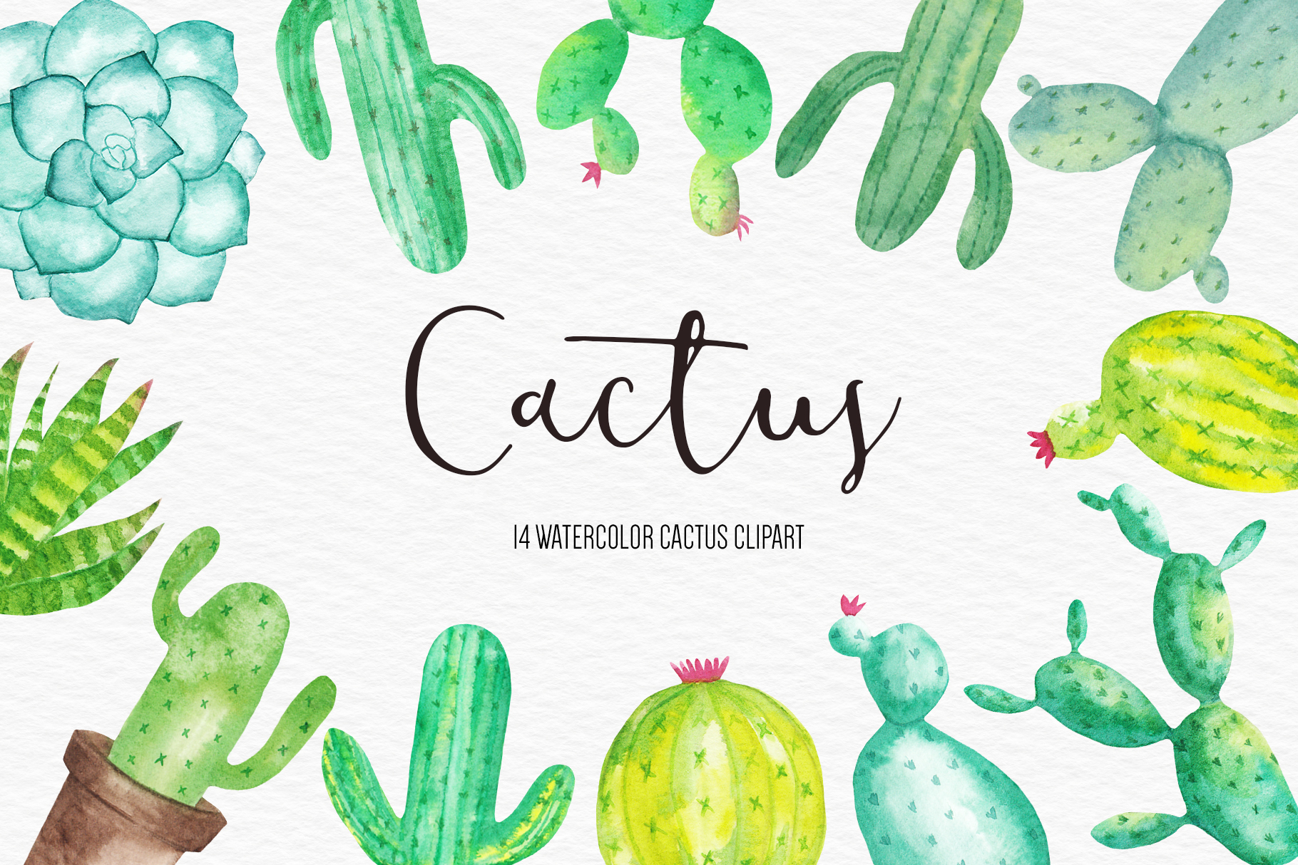 Download Free Watercolor Cactus Clipart Illustration Graphic By Bonadesigns for Cricut Explore, Silhouette and other cutting machines.