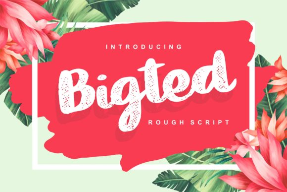 Print on Demand: Bigted Script & Handwritten Font By Vunira