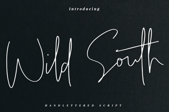Print on Demand: Wild South Script & Handwritten Font By it_was_a_good_day