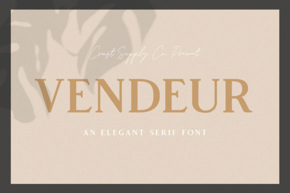 Vendeur Serif Font By craftsupplyco