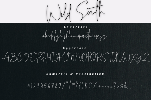 Print on Demand: Wild South Script & Handwritten Font By it_was_a_good_day - Image 7