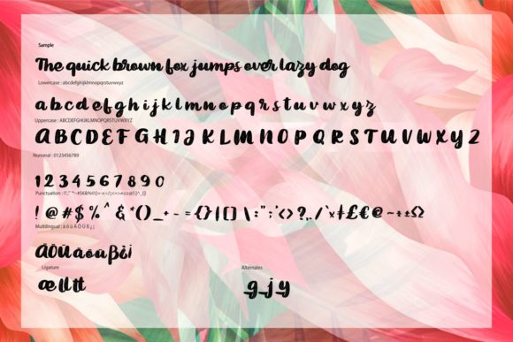 Print on Demand: Bigted Script & Handwritten Font By Vunira - Image 6