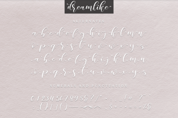Print on Demand: Dreamlike Script Script & Handwritten Font By it_was_a_good_day - Image 4