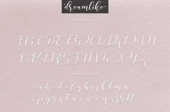 Print on Demand: Dreamlike Script Script & Handwritten Font By it_was_a_good_day - Image 2