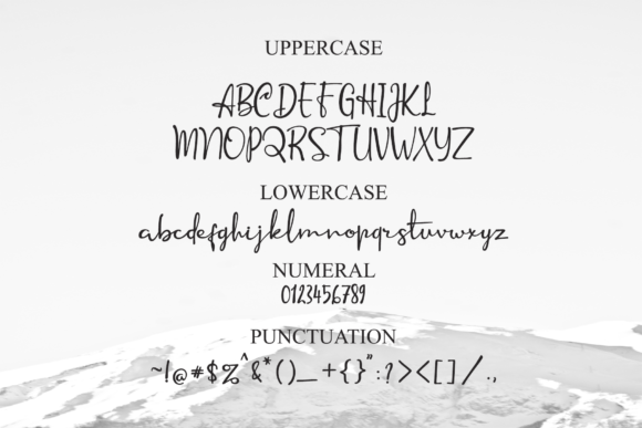 Print on Demand: Anuin Script & Handwritten Font By LetterBeary - Image 8