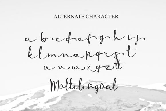 Print on Demand: Anuin Script & Handwritten Font By LetterBeary - Image 9