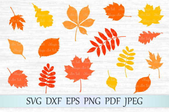Download Free Fall Leaf Bundle Graphic By Magicartlab Creative Fabrica for Cricut Explore, Silhouette and other cutting machines.