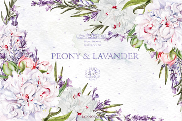 Watercolor Peony & Lavender Graphic By Knopazyzy