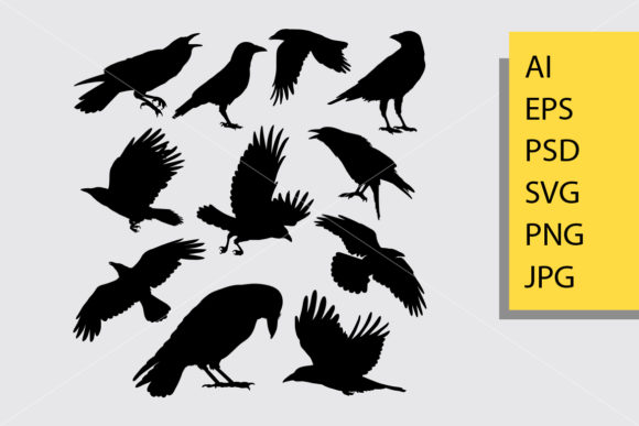 Download Free Crow Bird Silhouette Graphic By Cove703 Creative Fabrica for Cricut Explore, Silhouette and other cutting machines.