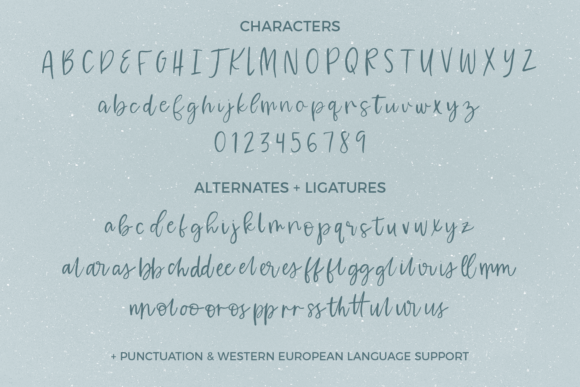 Print on Demand: Waterssong Script & Handwritten Font By BeckMcCormick - Image 10