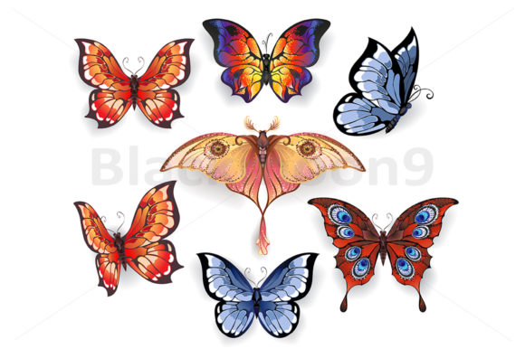 Set of Bright Exotic Butterflies Graphic Illustrations By Blackmoon9
