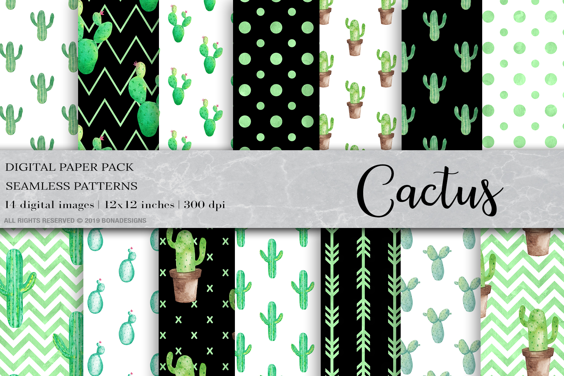 Download Free Watercolor Cactus Digital Papers Graphic By Bonadesigns SVG Cut Files