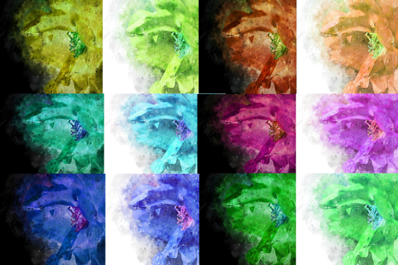 Print on Demand: Watercolor Rose 1 Digital Design 12 Graphic Backgrounds By Josephine's Digital Art