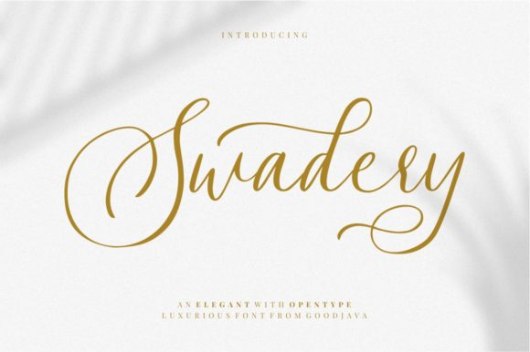 Print on Demand: Swadery Script & Handwritten Font By goodjavastudio
