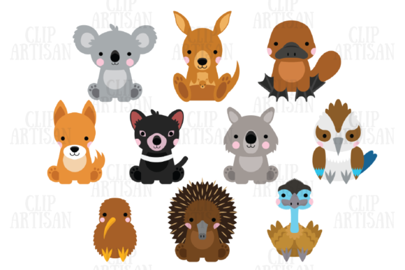 Australian Animals Clipart Kiwi Animals Graphic Illustrations By ClipArtisan - Image 1