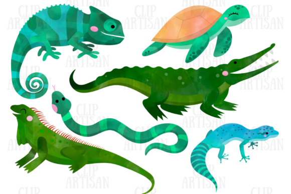Watercolor Reptiles Clipart Graphic Illustrations By ClipArtisan