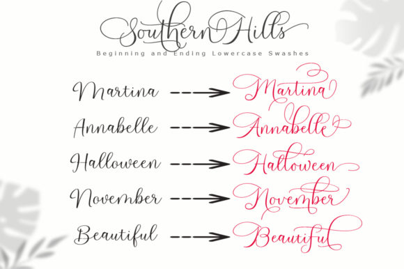 Print on Demand: Southern Hills Script & Handwritten Font By Cooldesignlab - Image 9