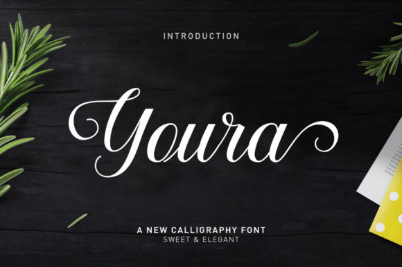 Print on Demand: Youra Script & Handwritten Font By Nandatype - Image 1