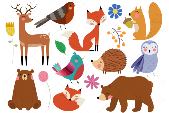 Woodland Animals Clip Art Forest Animal Graphic Illustrations By ClipArtisan