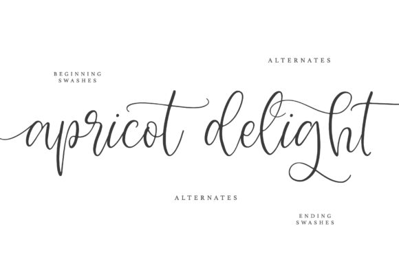 Print on Demand: Apricot Delight Script & Handwritten Font By Dmitrii Chirkov - Image 5