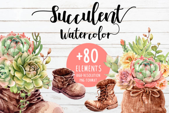 Watercolor Succulents and Shoe Pot Graphic By SapG Art