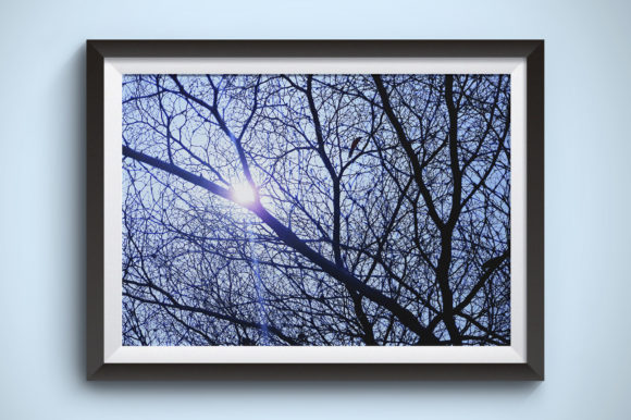 The Sun is Shining Behind a Tree Branch Graphic Nature By Kerupukart Production