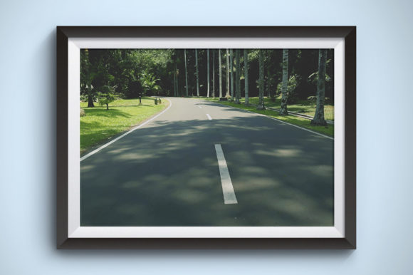 Shady Road and Quiet Photography Graphic Nature By Kerupukart Production