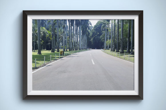 Hot Road and Quiet Photography Graphic Nature By Kerupukart Production